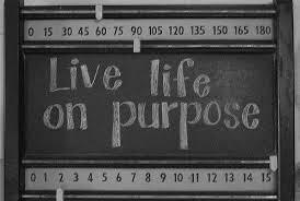 livelifeonpurpose